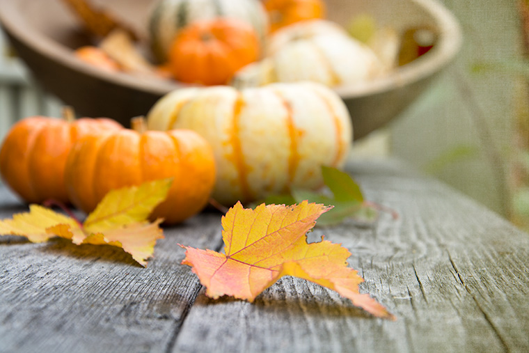 Autumn-Leaves-Pumpkins-1