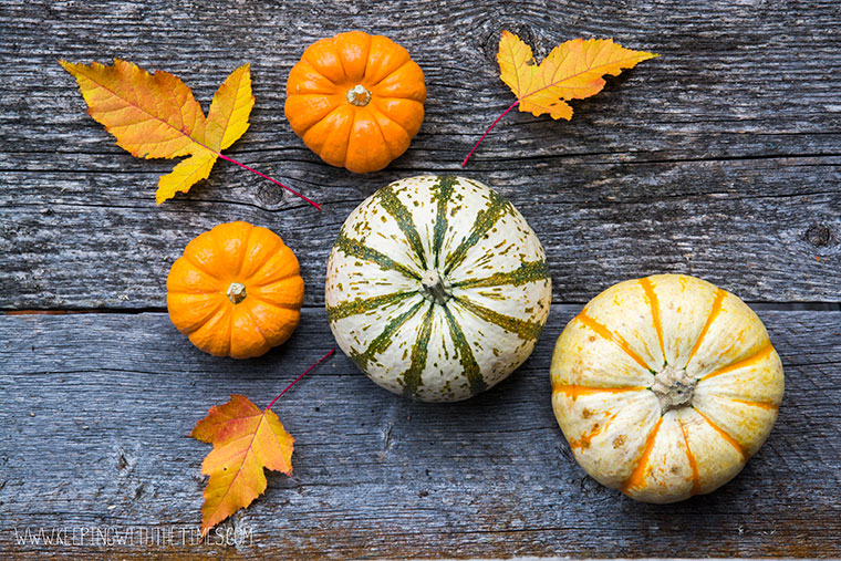 Pumpkins-From-Above
