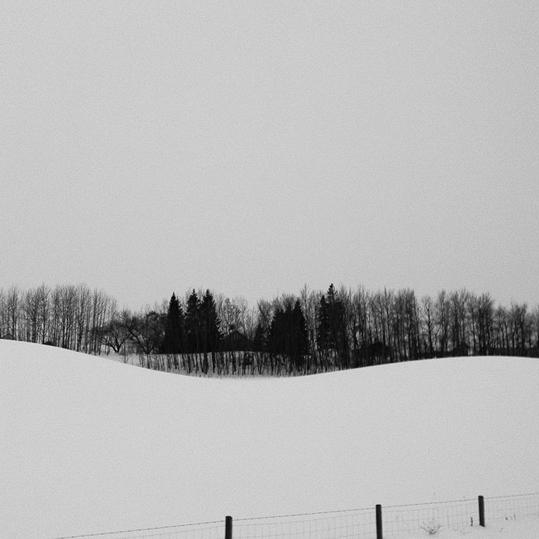 curvy-snowscape