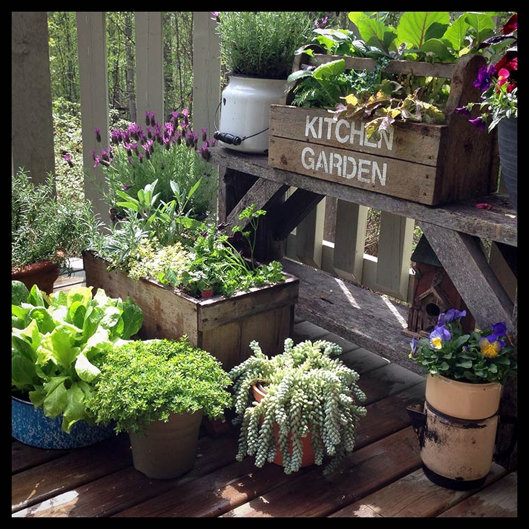 Kitchen-Garden2-copy