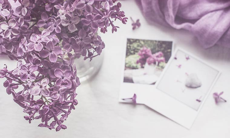 Lilac Still Life, Keeping With the Times