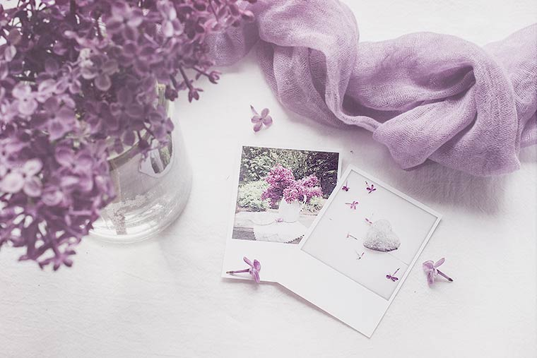 Melancholy-Lilac-with-Scarf1-copy
