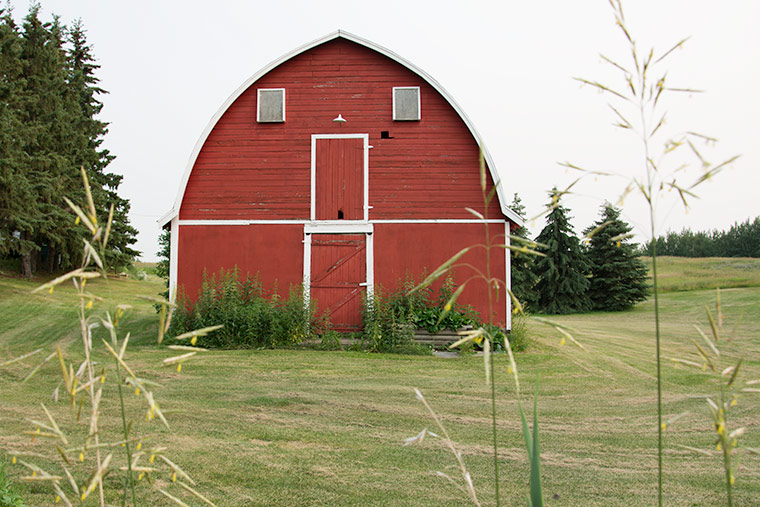 A Drive in the Country, barns, country, country living, keeping with the times, friday finds