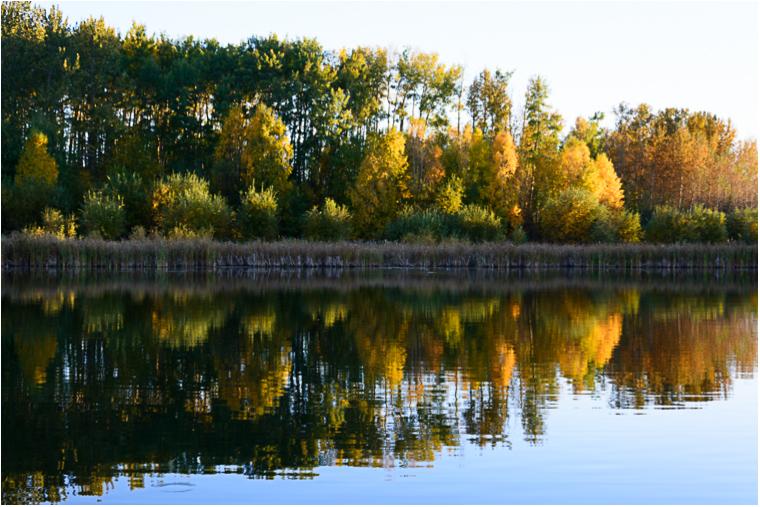 Autumn Reflections_10