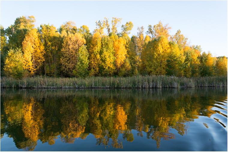 Autumn Reflections_13