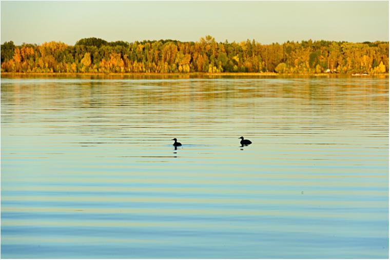 Autumn Reflections_14