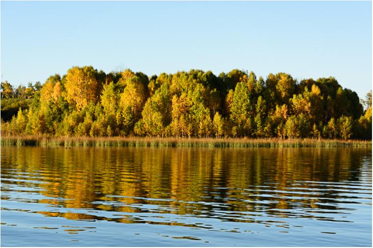 Autumn Reflections_3