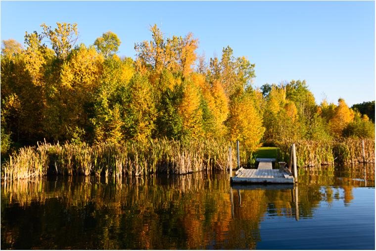 Autumn Reflections_9