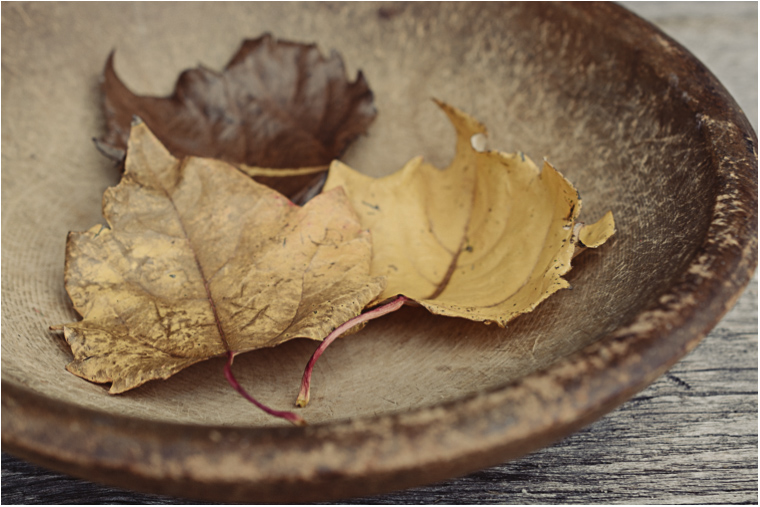 Autumn Leaves_2