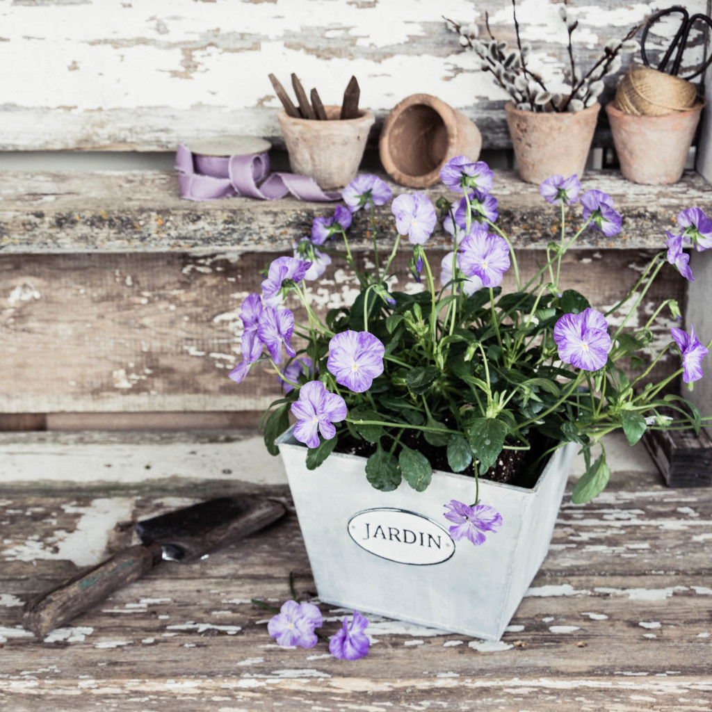 Potting Bench, Friday Finds, Pansies, Keeping With the Times