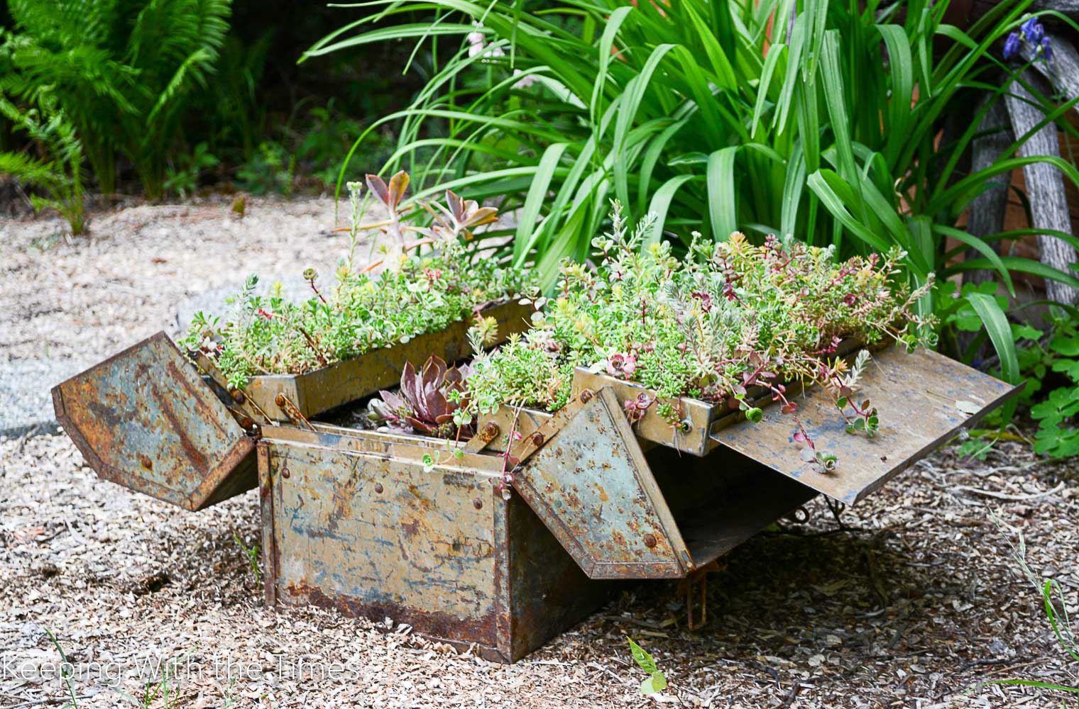 Upcycled Toolbox Planter Keeping With The Times