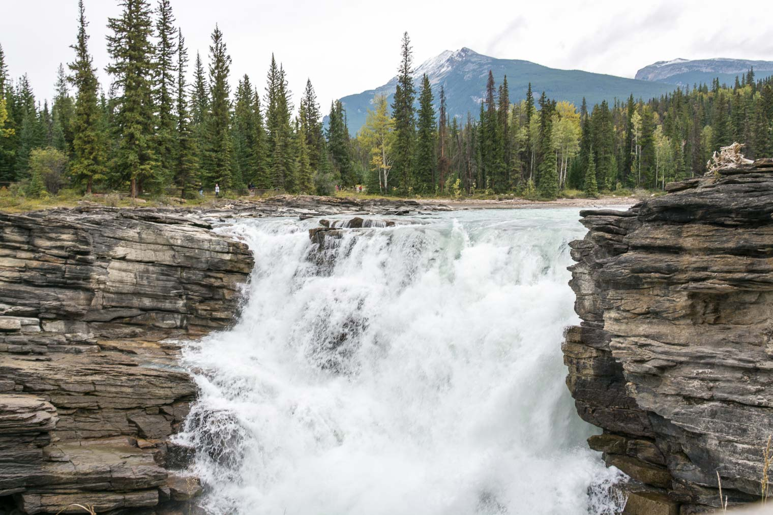 Canadian Rockies Getaway, Athabasca Falls, Keeping With the Times, Barb Brookbank