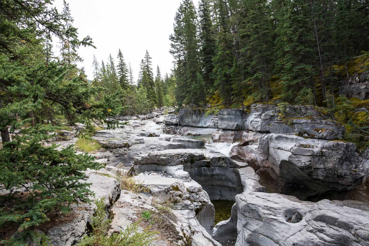 Canadian Rocky Mountains, Maligne Canyon, Keeping With the Times