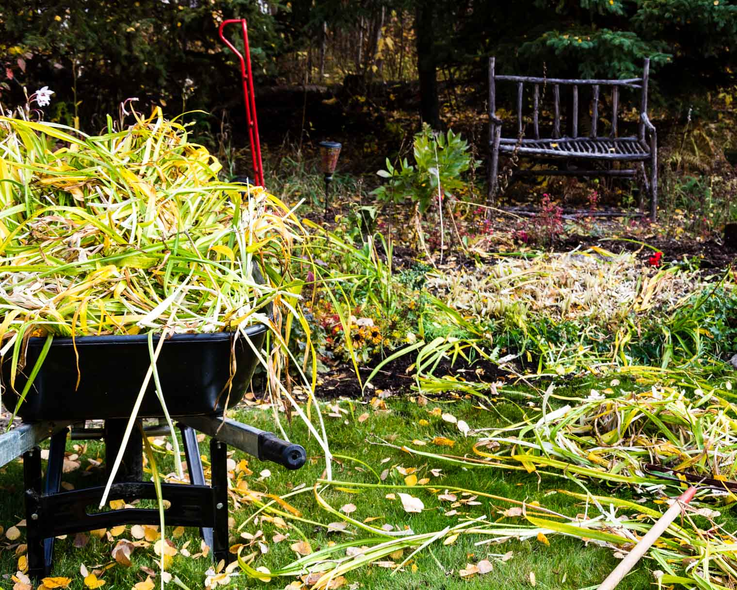 Autumn-Garden-Cleanup-39
