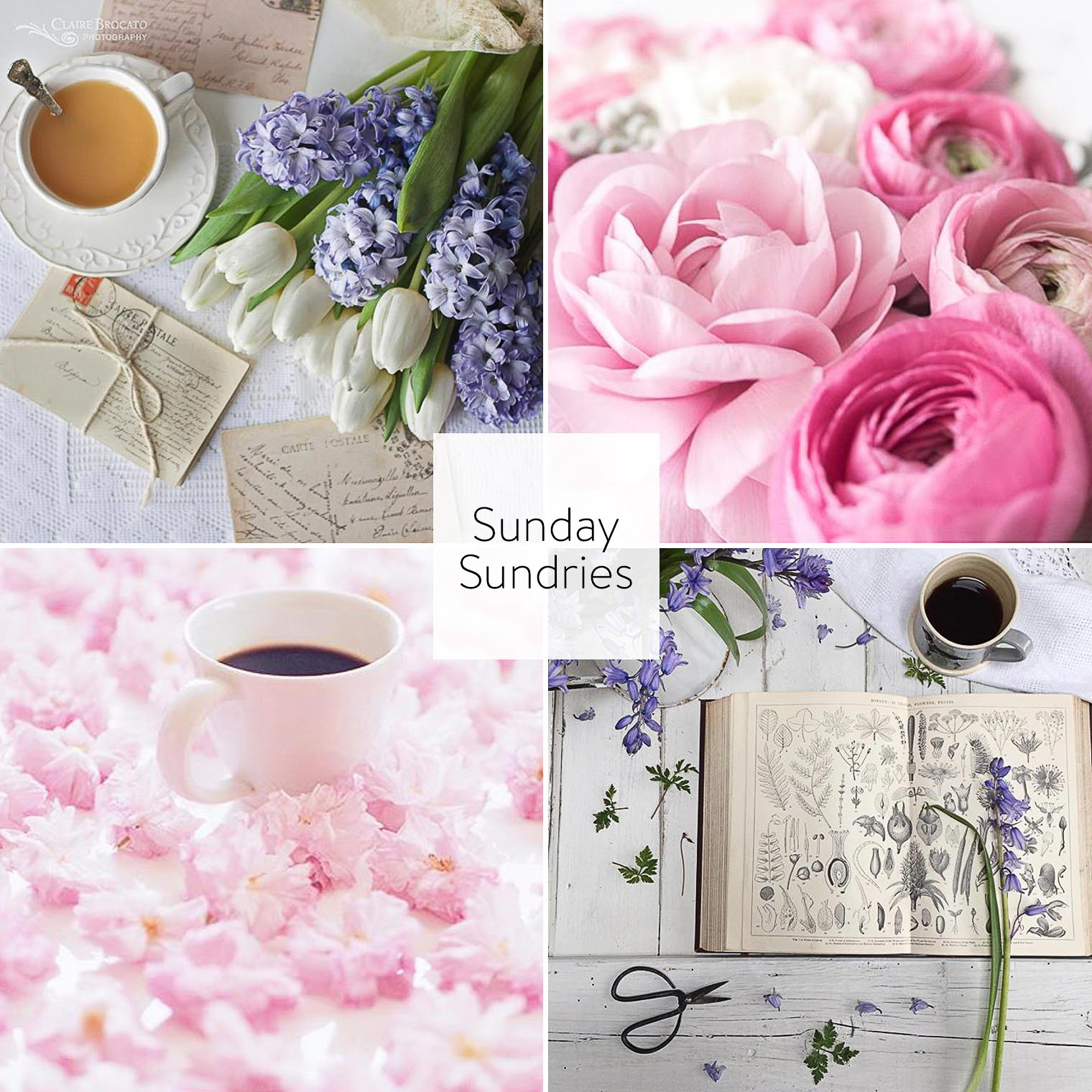 Sunday Sundries Feature April 24, Keeping With the Times, Barb Brookbank