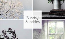 Sunday Sundries Feature May 8