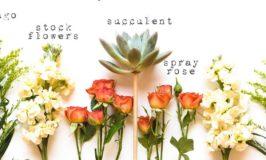 Trader Joe's Flowers Deconstructed