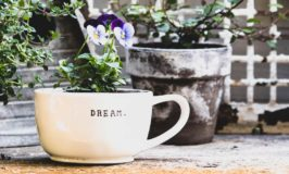 30 Ideas to Make June Magical