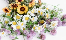 Easy Floral Arranging Tip
