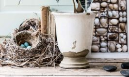 Styling Tips for Still Life or Home