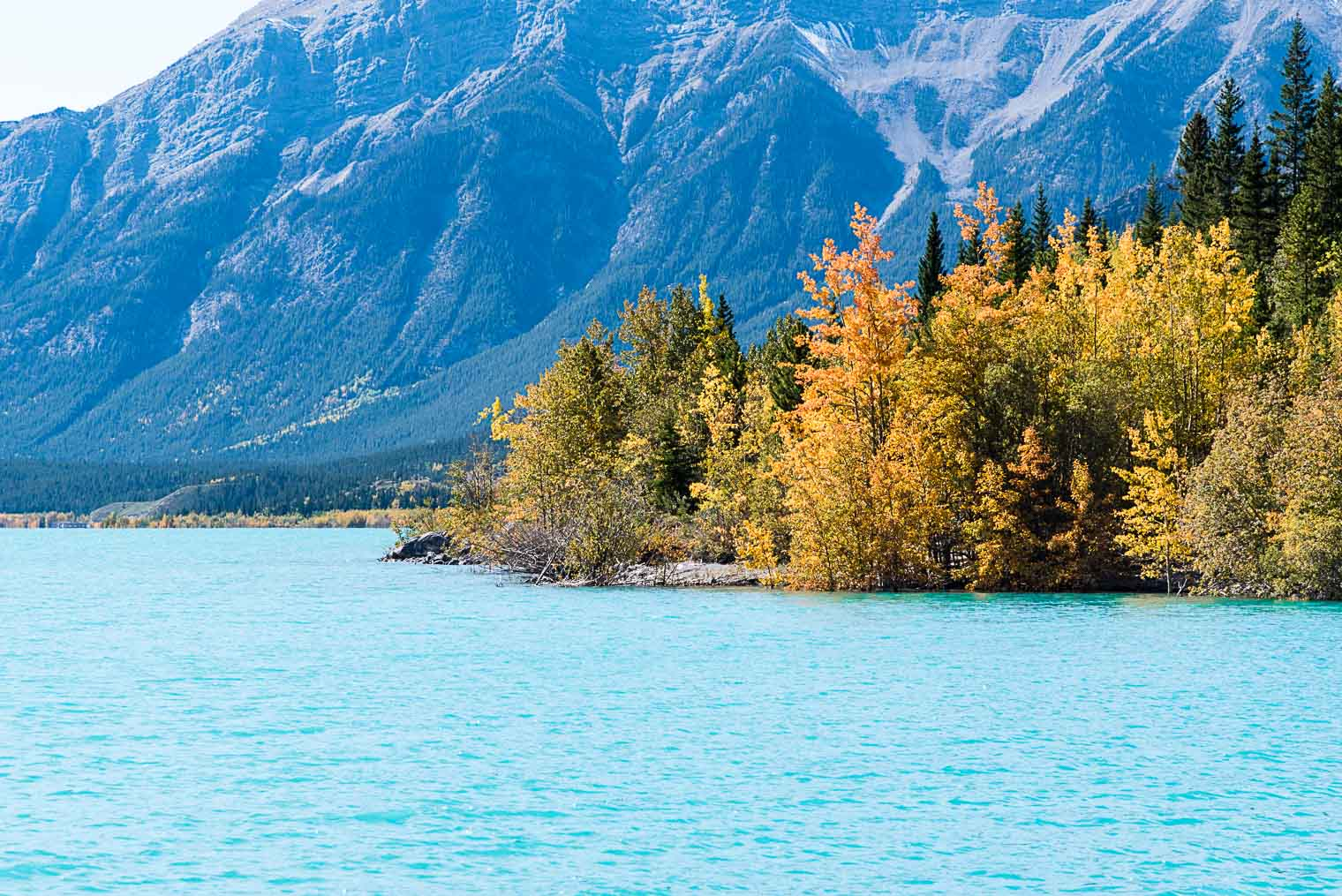 Abraham Lake, Alberta Canada, Keeping With the Times