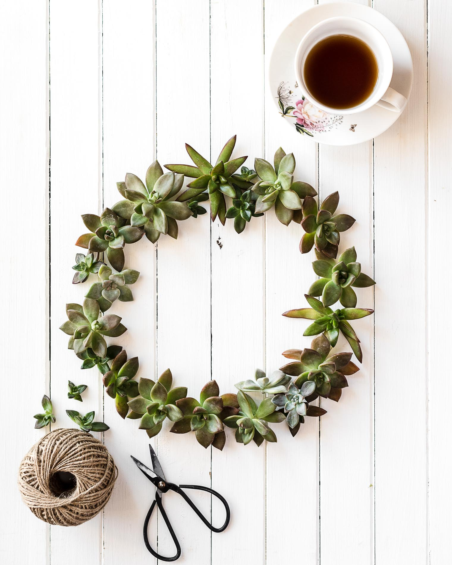 Five Things Friday, Succulent Wreath, Barb Brookbank, Keeping With the Times