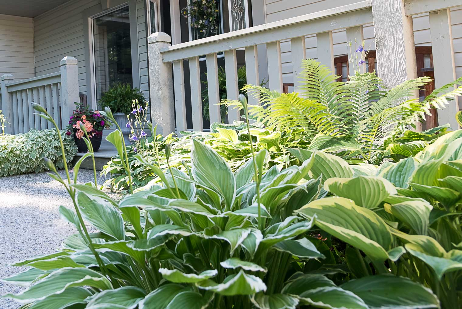 Partial Shade Gardening, Keeping With the Times