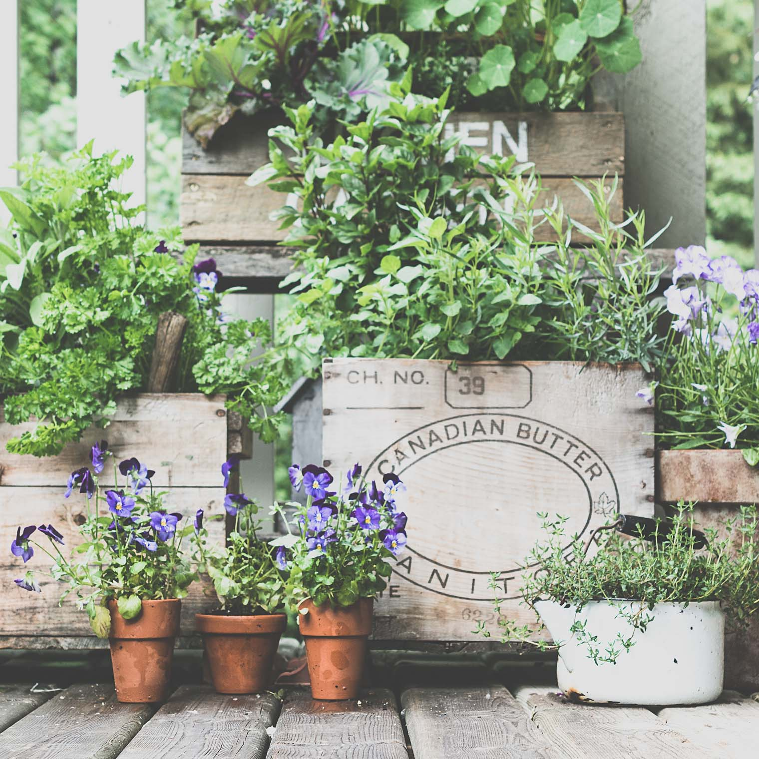 Herb Pots, Keeping With the Times, 31 Creative Ideas to Inspire your Month of May