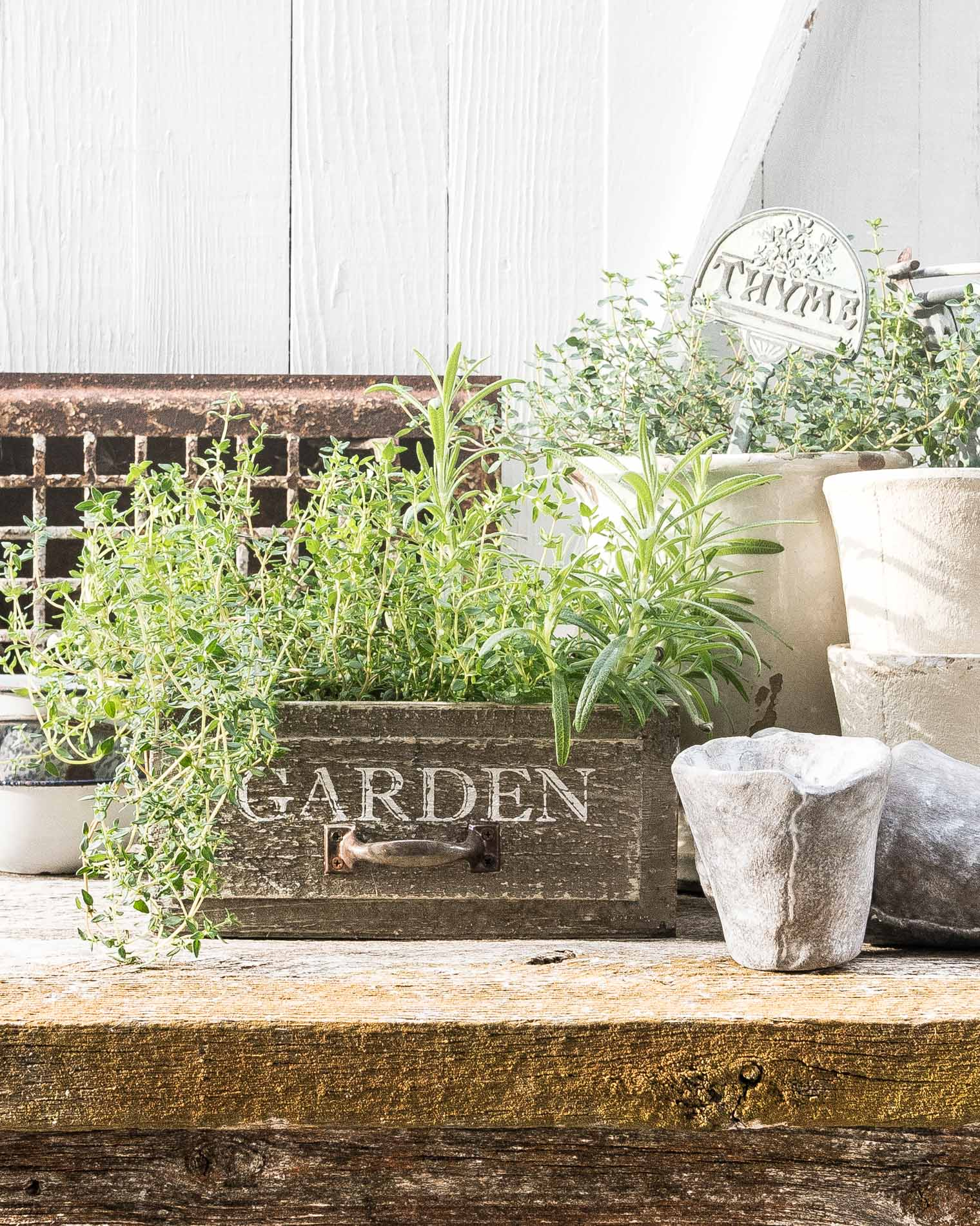 Garden Herbs, Five Things Friday, Keeping With the Times