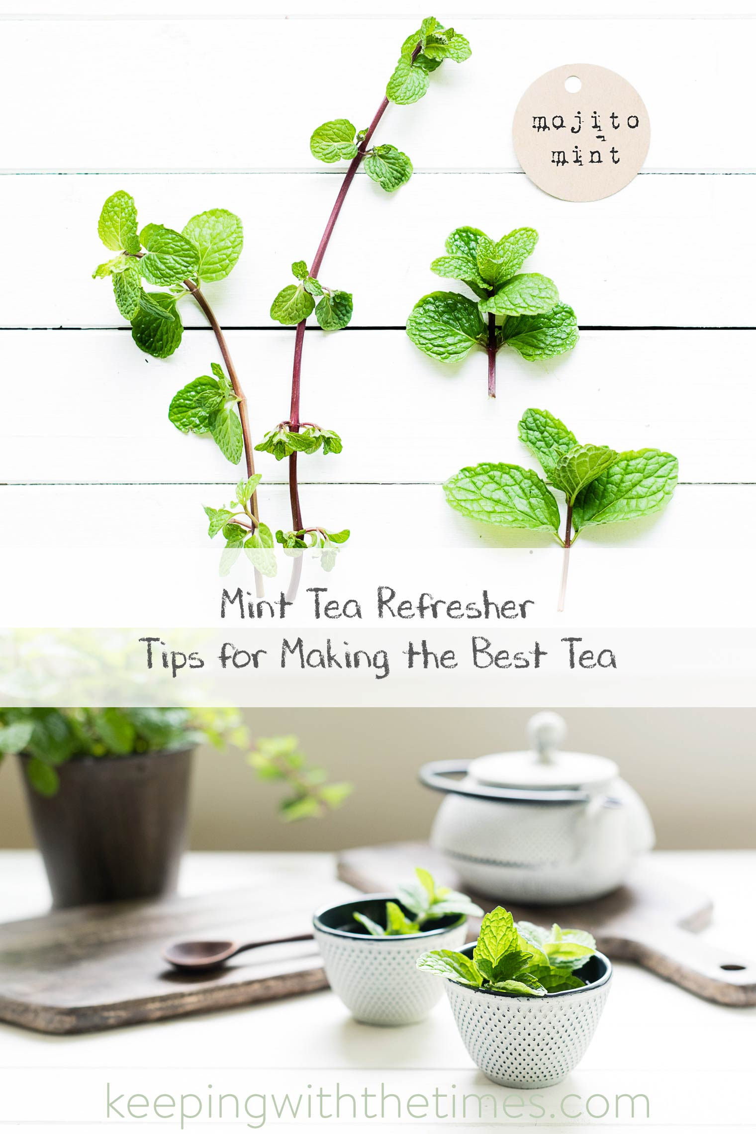 Mint tea is soothing and refreshing, and if you can use fresh mint it's especially delightful.  Growing mint is easy and satisfying as this plant is vigorous and aggressive. If you're growing mint, I would suggest you plant it in a container up off the ground or it will take over your garden!