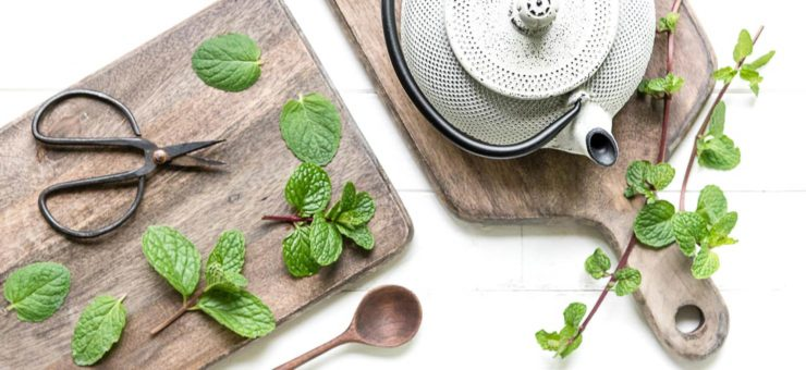 Mint Tea Refresher Tips for the Best Tea